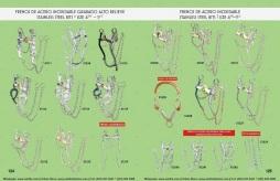 Catalogo Nantlis Vol IM2019 Nantlis Western Wear Productos de Mexico Page 124-125